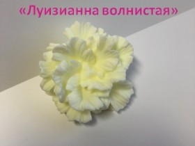 "Форма ""Луизианна волнистая"""