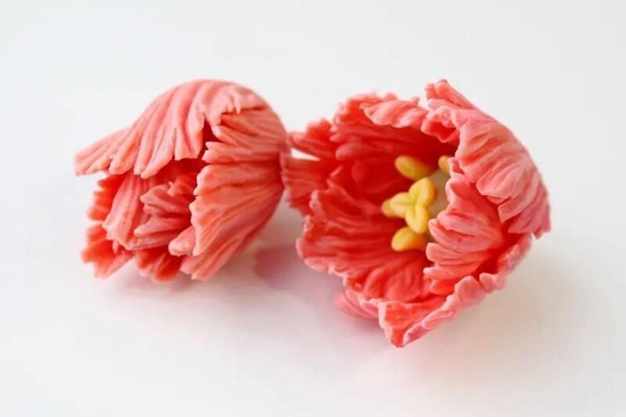 В пути новые цветочки. Тюльпаны и необычные садовые и тропические)