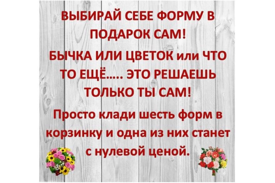 ДЕЙСТВУЕТ АКЦИЯ НА ФОРМЫ 5+1 в подарок!