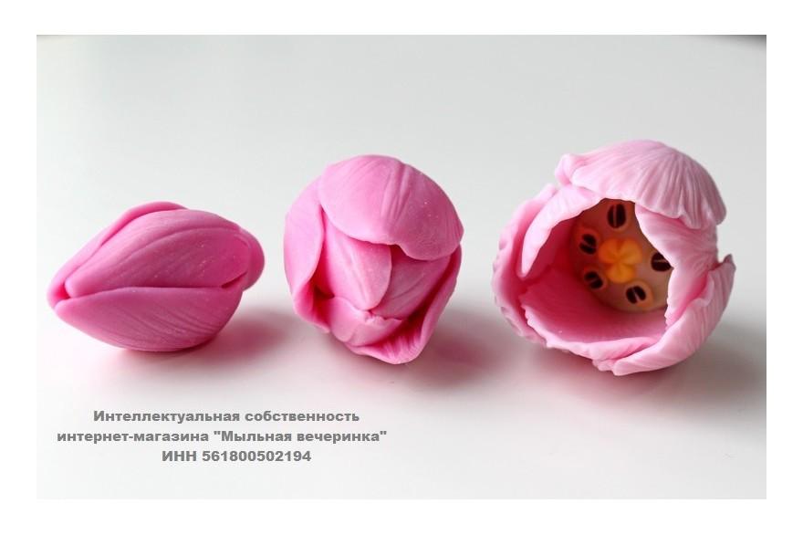 Тройник тюльпанов Фаворит! Отличное предложение!