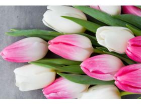 """Отдушка """"Тюльпаны"""" 15 мл"""