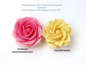 "Форма ""Испанская роза""распустившаяся 25гр"