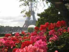 Отдушка Французский сад