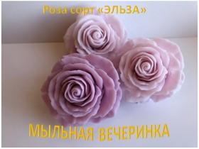 """Форма Роза """"Эльза"""""""