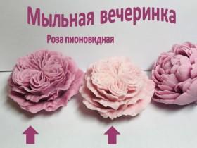 "Форма "" Бутон Снежная королева"" Акция"